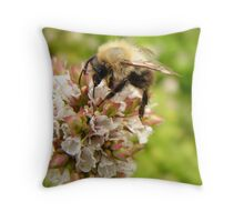 Looking for Honey Throw Pillow