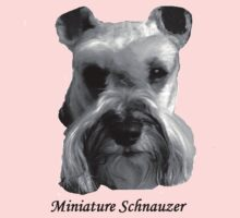 Miniature Schnauzer by Paul Gibbons
