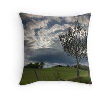 A Rural Scene Throw Pillow