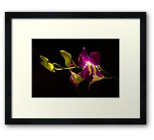 Reach Out & Touch Framed Print