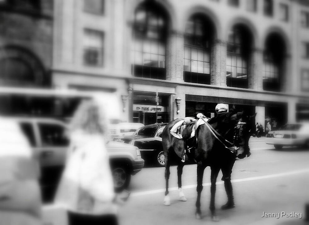 NY by Jenny Padley