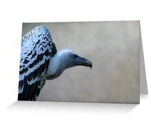 The Vulture Greeting Card