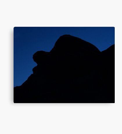 Elmer Fudd Resting under Night Sky Canvas Print