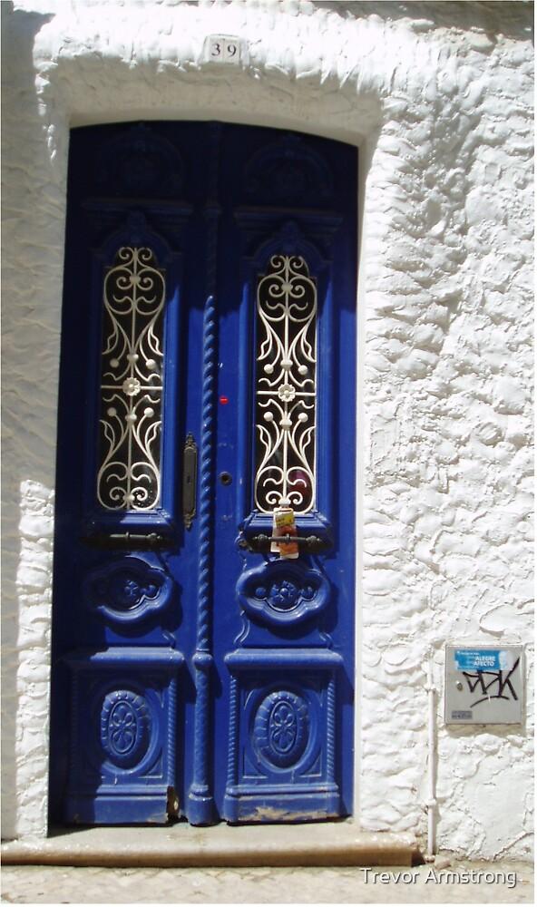 Blue Door by Trevor Armstrong