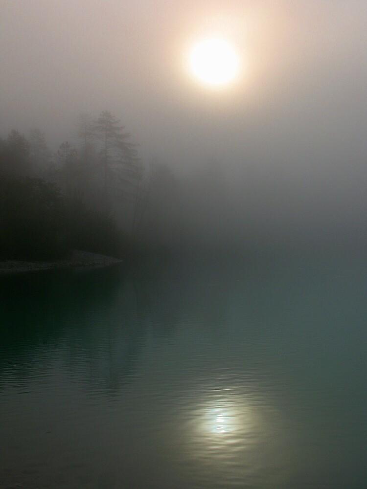Foggy Morning by Rok Cuder