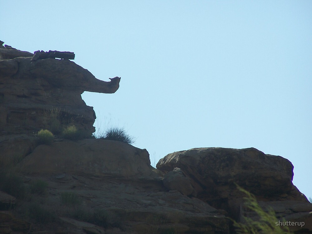 Rock Elephant by shutterup