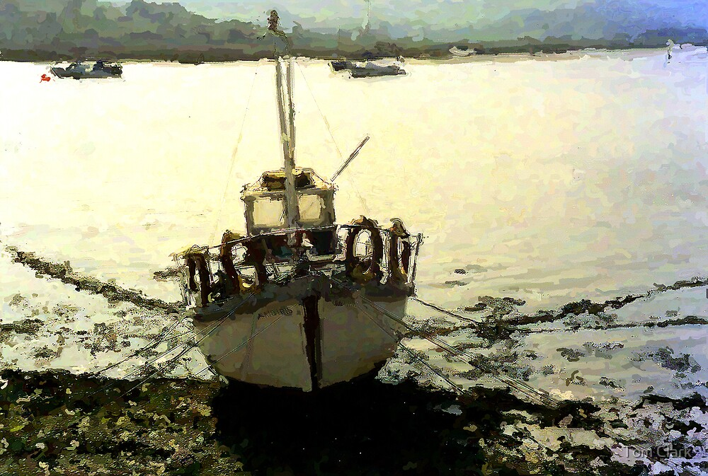 Stranded by Tom Clark