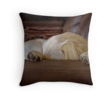 I have to sleep now... Throw Pillow