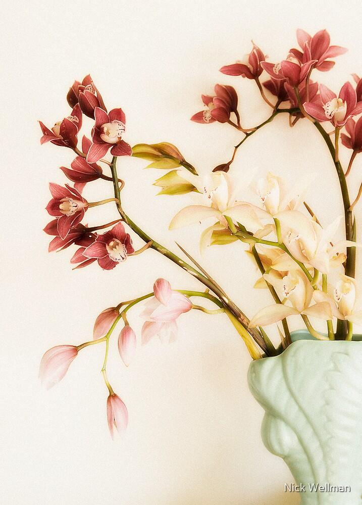 Burnett St Orchids by wellman