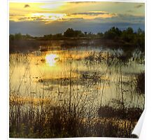 Upper Bittell canal feeder - colour photograph Poster