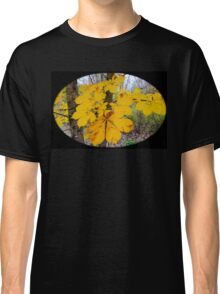 Country autumn  Classic T-Shirt