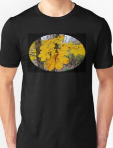 Country autumn  T-Shirt