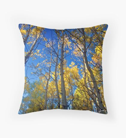 An Aspen Morning Throw Pillow