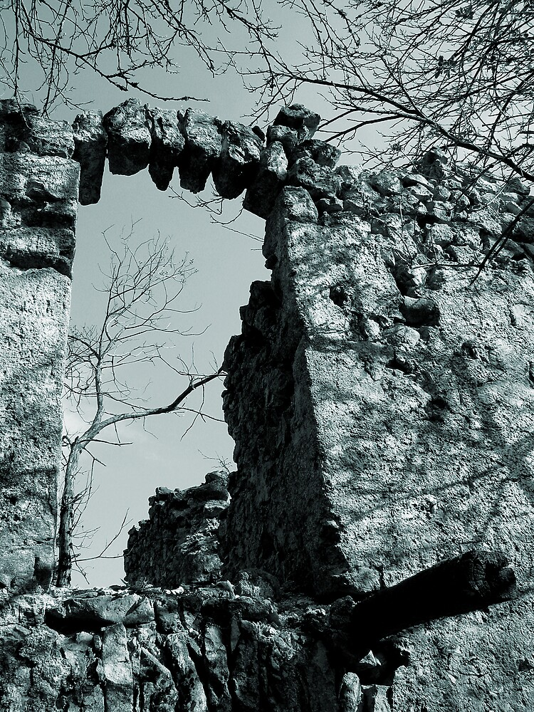 The Arch by Rok Cuder