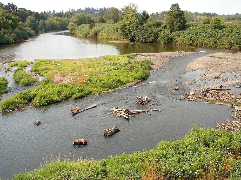 Willamette River by Keeton Gale
