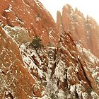 Christmas time in Garden of the Gods...Colorado Springs by dfrahm