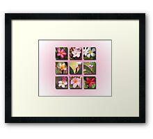 Plumeria Portfolio Framed Print
