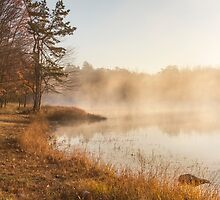 Golden Morning by Yelena Rozov