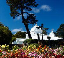 San Francisco Conservatory of flowers by Jeffrey  Sinnock