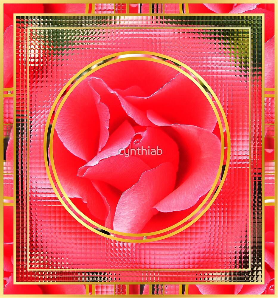 pink rose framed by cynthiab