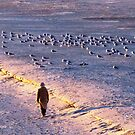 Winter Time on the Beach by Cynthia48