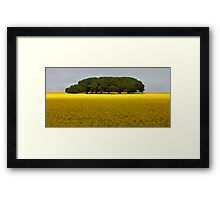 Trees in canola Field Framed Print