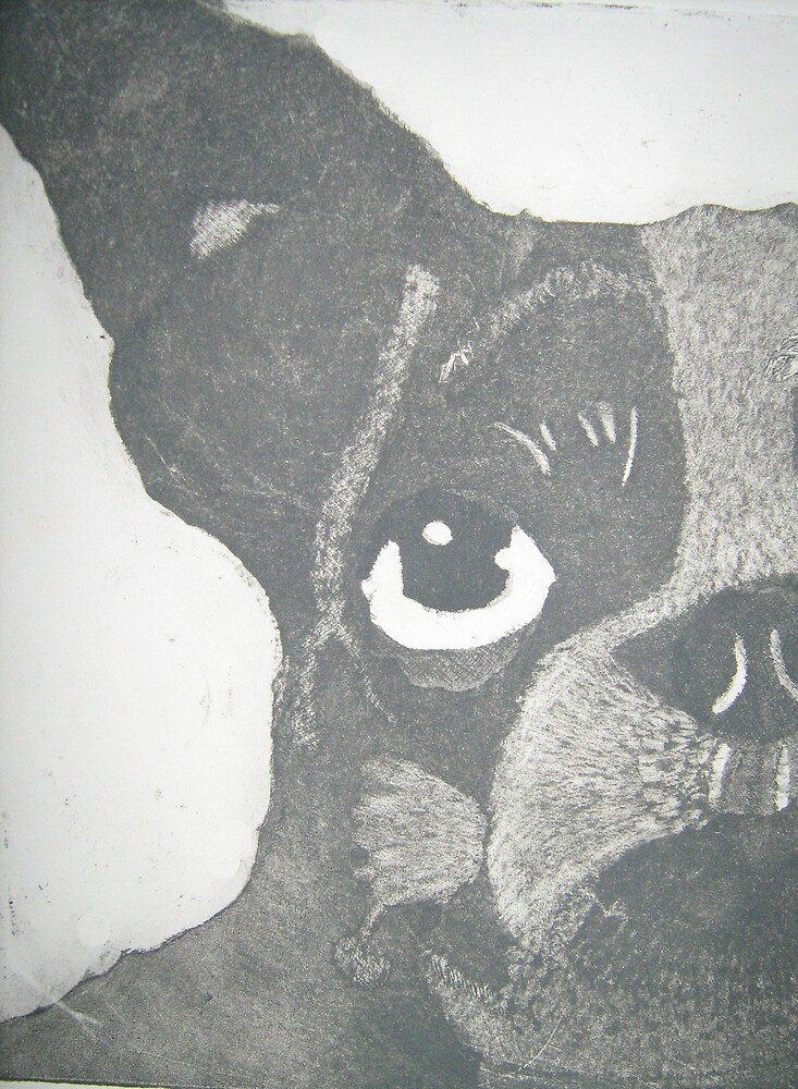 Etching of dog by Patricia  Knowles