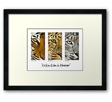 Extinction is forever Framed Print