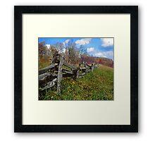 blueridge fence Framed Print