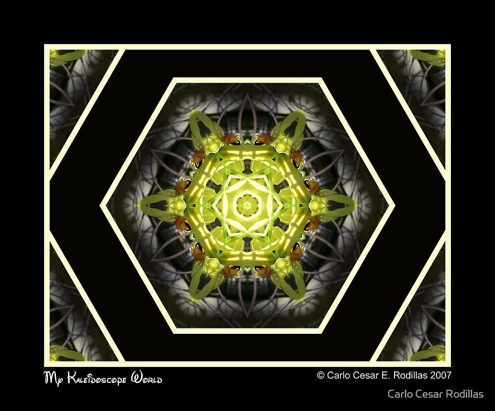 My Kaleidoscope World by Carlo Cesar Rodillas
