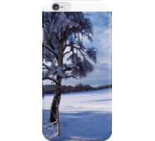 Beautiful winter landscape background iPhone Case/Skin