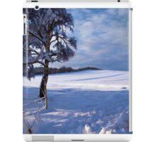 Beautiful winter landscape background iPad Case/Skin