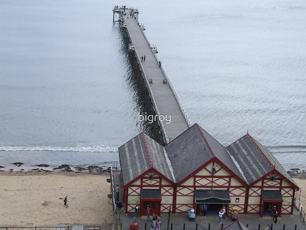 Saltburn Pier  by bigroy