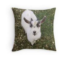 What's So Funny, Anyway? Throw Pillow