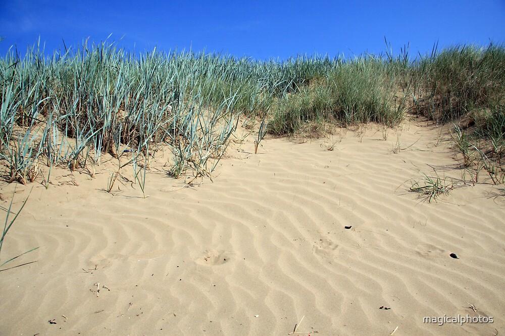 Dunes by magicalphotos