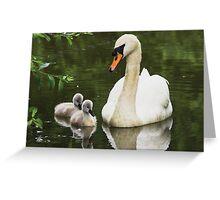 Swan & Cygnets Greeting Card