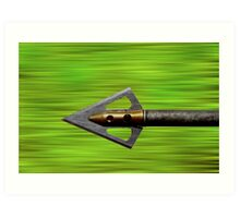 Flying Arrow Art Print
