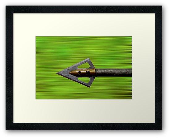 Flying Arrow by Michael Mill