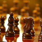 Wooden Chess Pieces by Michael Mill