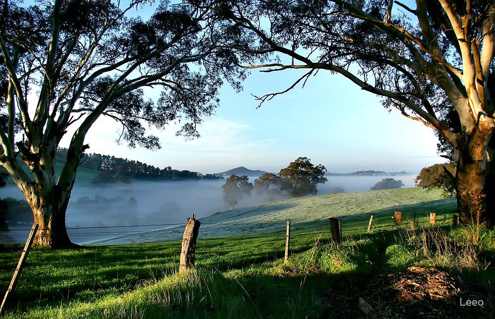 Nairne - Adelaide Hills by Leeo