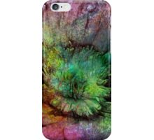 Rainbow touch rustic flower iPhone Case/Skin