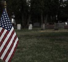 U.S. Graves by r2shotme