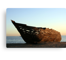 Ark 5 Canvas Print