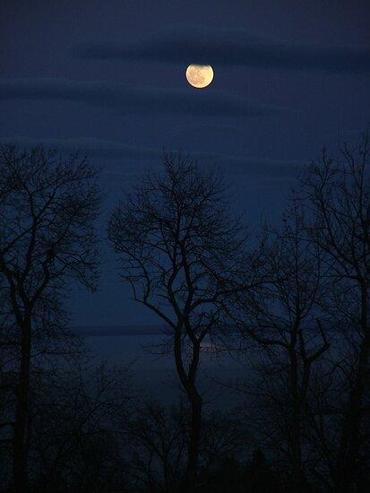 Full Moon Over Lake Superior by sara montour