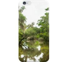 Barataria Preserve iPhone Case/Skin