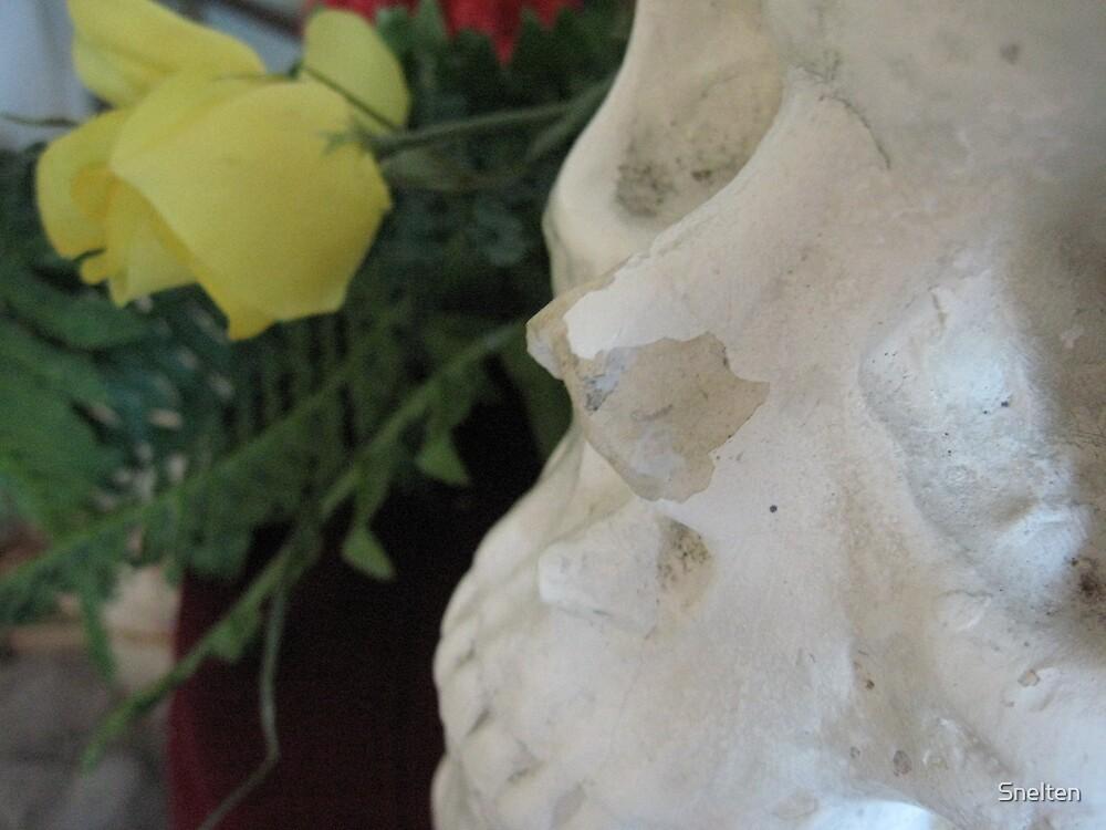 el dia de muertos by Snelten