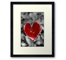 Love Heart2 (vertical) Framed Print