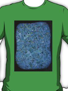 Mt. Bascobert Granite T-Shirt