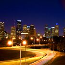 city of houston by birus