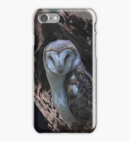 Barn owl .Tyto alba iPhone Case/Skin
